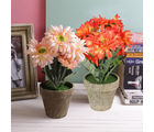 Tayhaa Orange And Pink Shade Guldaudi Style Artificial Plants With Pot - Set Of 2 (APL1654)