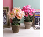 Tayhaa Set Of 2 Hearttaking Pink And Peach 29.5 Cm High Artificial Floral Plants (APL1621), pink and peach