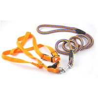 Easypets TRUECHOCIE Dog Leash with Collar (Medium) (Yellow)