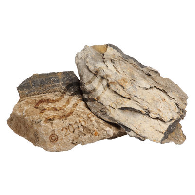 Ocean Free Decoration Cloudy Rock - 3 Kg, assorted