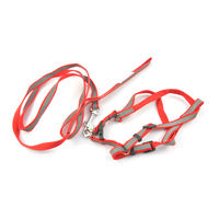 Easypets BESTMASTER Leash Collar Harness Set (Small) (Red)