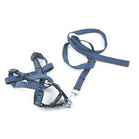 Easypets STELLAR Dog leash with collar and bell (Blue)