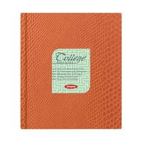 Anupam College Notebook 380 Pages