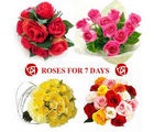 BAF Missing You 7 Days 100 Roses Gift, midnight delivery