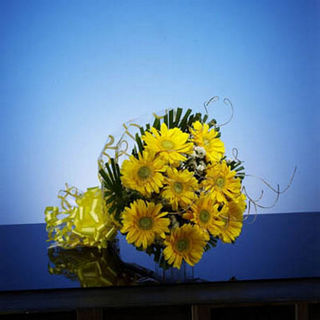 BAF Cheeky Yellow Gift, Free Shipping