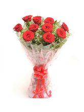 BAF Vivid Vision Gift - 10 Roses (BAF-SK1)