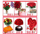 BAF 6 Days Endless Surprises Gift, free shipping