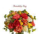 BAF Friendship Day-Promise Gift