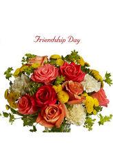 BAF Friendship Day-Promise Gift
