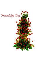 BAF Friendship Day-lifesize Friendship Gift