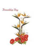 BAF Friendship Day-Its Your Day Gift
