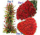 BAF 3 Days Red Hundred Roses Gift, free shipping