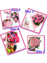 BAF 4 Days For U Gift, Free Shipping