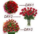 BAF 3 Days Rosy Days Gift, free shipping