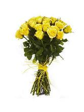 BAF Golden Glow Gift, Free Shipping