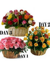 BAF 3 Days Fresh Colors Of Love Gift, Free Shippin...