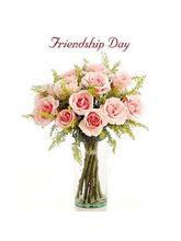 BAF Friendship Day-Hugs Gift
