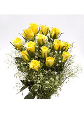 BAF Spring Sunshine Gift, Free Shipping
