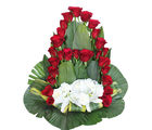 Primo Gifts A' Splendid Arrangement (PR17043)