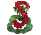 Primo Gifts S' Rose Arrangement (PR17044)