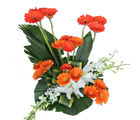 Primo Gifts Bright Orange Bloom (PR17042)