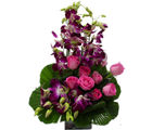 Primo Gifts An Exotic Floral Arrangement (PR17085)