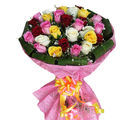 Primo Gifts Colorful Bunch for U (PR17004)