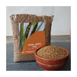 Kodo Millet, 1 kg