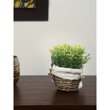 Round Cane Basket Potted Plant - @home by Nilkamal, Yellow