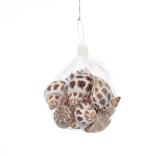 Large Shell Pebbles - @home by Nilkamal, White