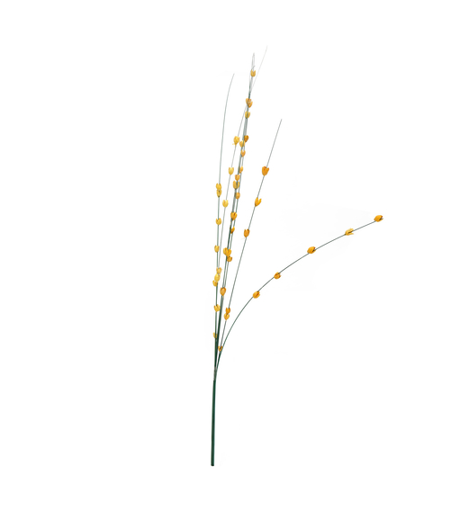 Solitary Tall Wicker Buds - @home by Nilkamal, Yellow