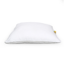 Fantasy 61 cm x 61 cm Cushion Filler - @home by Nilkamal, Multicolor