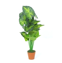 Leafy Tree with Pot - @home by Nilkamal, Green