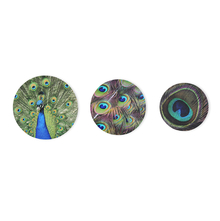 Peacock Set of 3 Round Picture Frame - @home by Nilkamal, Maroon