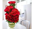 Ferns N Petals Red Elegance