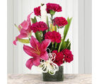 Ferns N Petals Serene Carnation