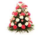 Ferns N Petals Elegant Blooms Of Sunshine