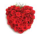 Ferns N Petals Blooming Love