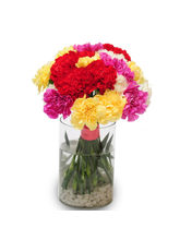 Ferns N Petals Sweet Carnations