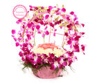 Ferns N Petals Mothers Day Special Vibrant Orchid Celebration