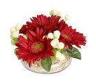 Ferns N Petals Mothers Day Ravishing Red Arrangement