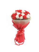 Ferns N Petals Red N White Carnations