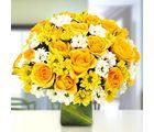 Ferns N Petals Sunshine For The Beloved