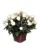India Gifts Hub White Roses Basket 12 Flowers (IGHFLOW061)