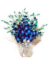 India Gifts Hub Blue Orchids Bunch 12 Stem of Flowers (IGHFLOW085)