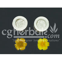 Silicone Rubber Mould SL_ 119