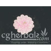 Silicone Rubber Mould SL_ 105