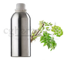 Angelica Archangelica Oil, 50g