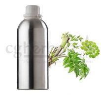 Angelica Archangelica Oil, 50g