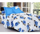Homeland@Dreamsunlimited Cotton Floral Double Bedsheet (Ael_ Sandrin), white and blue